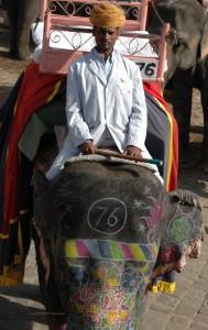 Jaipur, India, 2011, during the Holi festival.